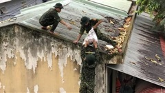 Ảnh: 'Lính áo xanh' giúp dân, trường học phòng chống bão số 5