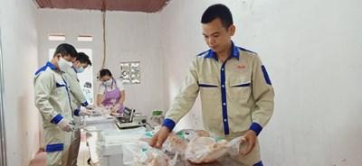 Hiệu quả của nuôi gà thả đồi bằng thức ăn thảo dược