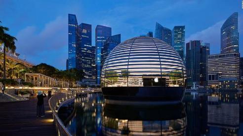 Singapore trả tiền cho người dân tập luyện với Apple Watch