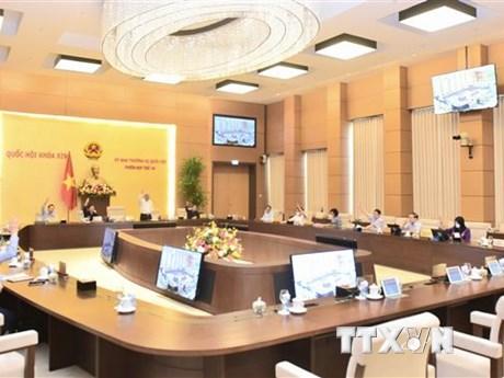Tán thành việc thành lập Văn phòng Đoàn đại biểu Quốc hội và HĐND