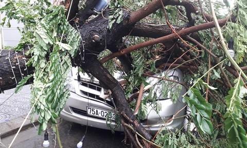 Loạt ảnh Thừa Thiên - Huế ngổn ngang sau bão