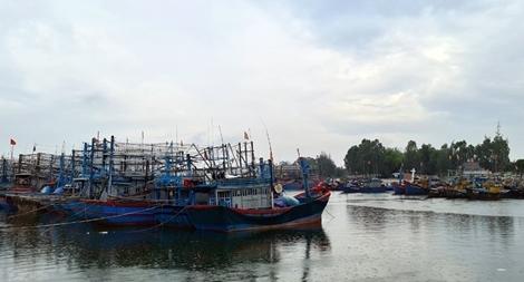 Quảng Nam sơ tán hơn 1.500 người trước khi bão số 5 đổ bộ