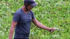 Người dân Đà Nẵng bắt cá nước ngọt bên bờ biển sau ảnh hưởng của bão số 5