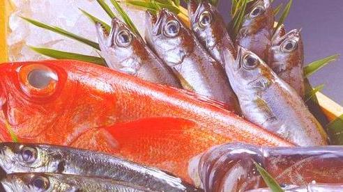 Hai loại cá này là 'bể chứa' formaldehyde và kim loại nặng