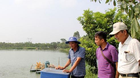 Hiệu quả từ nuôi trồng thủy sản công nghệ cao