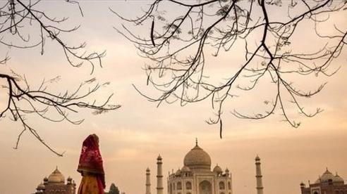 Ấn Độ mở cửa trở lại đền Taj Mahal bất chấp dịch COVID-19