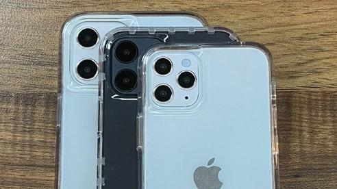 iPhone 12 màn hình 5,4 inch sẽ mang tên gọi iPhone 12 mini