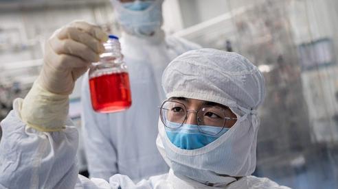 Tại sao tính minh bạch trở thành yếu tố hàng đầu quyết định hiệu quả của vaccine COVID-19?