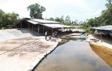 Bình Định mời gọi đầu tư khu du lịch suối nước nóng gần 2.000 tỉ đồng