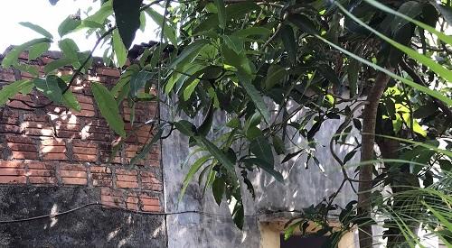 TT- Huế: UBND huyện Phong Điền 'hành' dân dù bản án đã có hiệu lực pháp luật