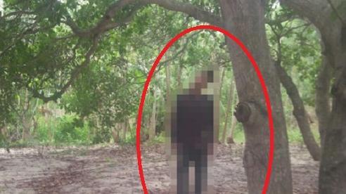 Điều tra vụ nam thanh niên chết trong tư thế treo lơ lửng trên cành cây trong rừng