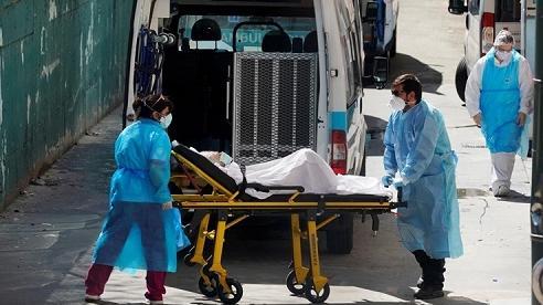 Số ca nhiễm COVID toàn cầu vượt 30 triệu, WHO cảnh báo 2 triệu người có thể chết vì đại dịch