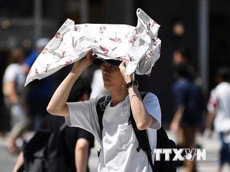 Nhật Bản ghi nhận số người nhập viện và tử vong kỷ lục do nắng nóng