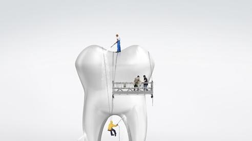 Chuyện lạ: Hàm răng của loài người là một sự tiến hóa lỗi?