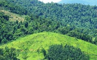 Việt Nam sẽ được nhận hơn 51 triệu USD nếu giảm 10,3 triệu tấn CO2 đến năm 2025