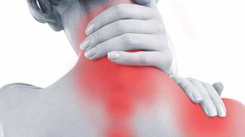 2 món thảo dược dễ tìm trị chứng đau cổ vai gáy, tê tay có nhiều người mắc