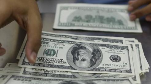 Tỷ giá ngoại tệ ngày 26/10: Mọi yếu tố đều đẩy USD giảm giá