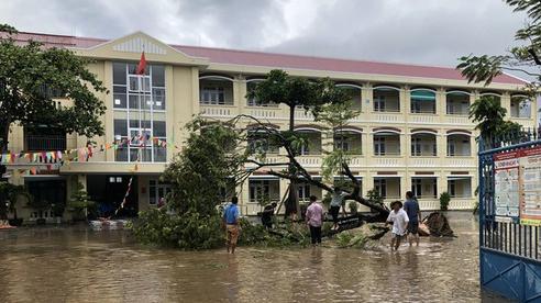 Đà Nẵng cho học sinh nghỉ học tránh báo Molave