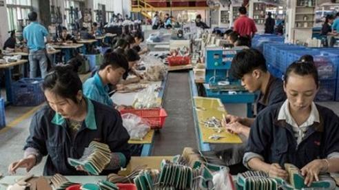 Quảng Ngãi: Các doanh nghiệp, đơn vị chủ động cho người lao động nghỉ việc để tránh bão