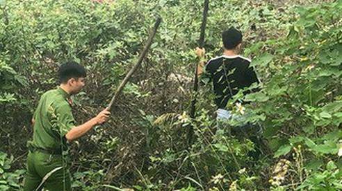 Hà Nội: Trắng đêm lật từng bụi cỏ tìm nữ sinh mất tích bí ẩn