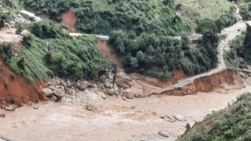 200 công nhân thủy điện Đăk Mi 2 (Quảng Nam) bị mắc kẹt trong rừng kêu cứu vì cạn lương thực