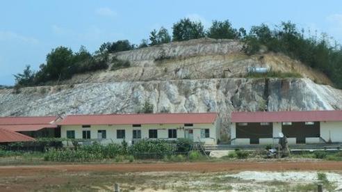 Chiếm đất rừng phòng hộ xây trụ sở doanh nghiệp bị phạt 210 triệu đồng