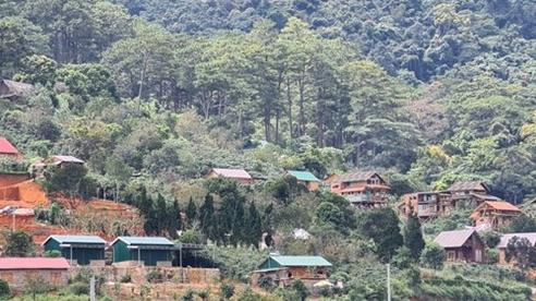 Lâm Đồng yêu cầu xử lý kịp thời hành vi vi phạm tại 'Làng biệt thự' dưới chân núi Voi
