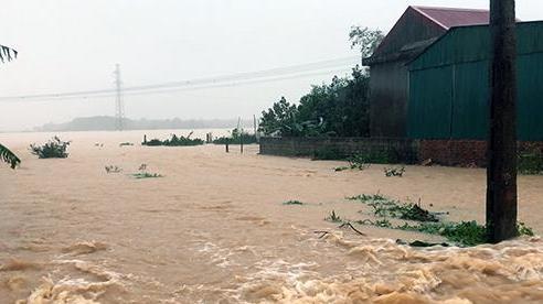 Chủ động sơ tán người dân khu vực ngoài bãi sông, vùng ngập lũ