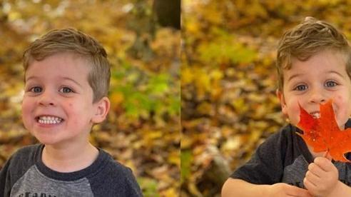 So sánh camera iPhone 11 Pro và iPhone 12 Pro
