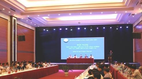 Đẩy nhanh việc khôi phục sản xuất nông nghiệp tại các tỉnh miền Trung