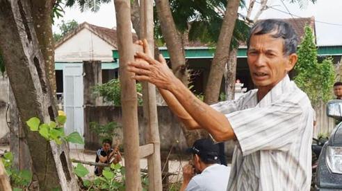 Tiền điện tăng hàng chục lần, gia đình nông dân chật vật tìm cách trả