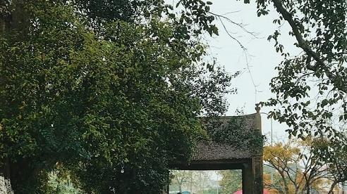 Làng cổ Đường Lâm, 15 năm bảo tồn và phát triển du lịch