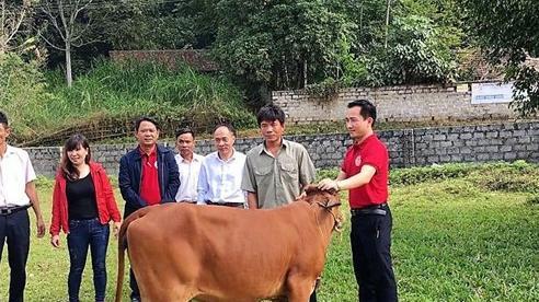 Thanh Hoá: Đảm bảo an sinh xã hội bền vững