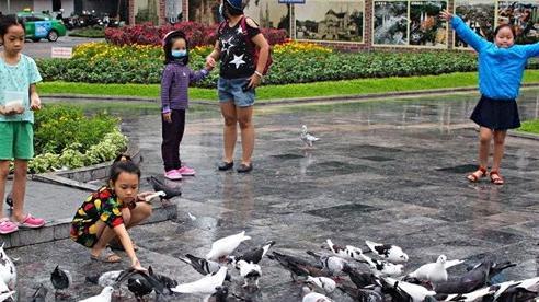 Người dân Sài Gòn đội mưa, đưa con đến nhà thờ cho bồ câu ăn