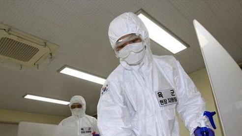 Hàn Quốc cấm tổ chức tiệc tất niên ngăn ngừa dịch COVID-19