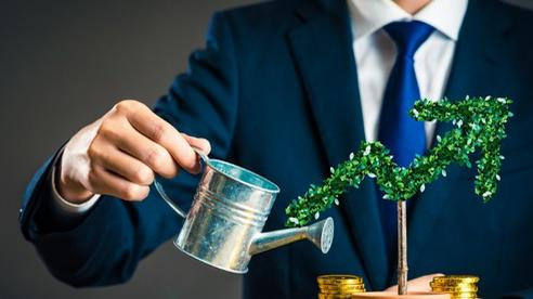 Kênh cất trữ tài sản an toàn , đầu tư sinh lời cuối năm 2020