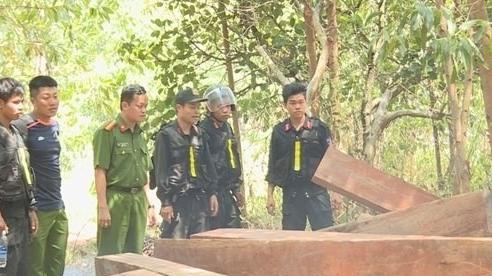 Để lâm tặc 'băm nát' rừng, nguyên Giám đốc Công ty Lâm nghiệp Ea Kar bị khởi tố