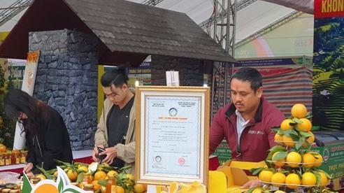 Kết nối doanh nghiệp tỉnh Hà Giang với các doanh nghiệp, nhà phân phối trên địa bàn Hà Nội
