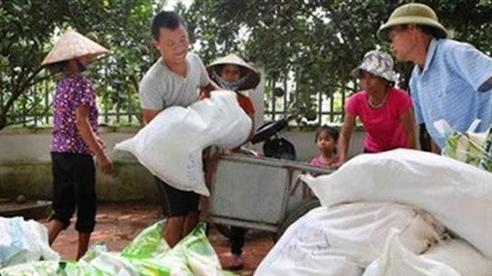 Thủ tướng quyết định xuất cấp thêm 3.600 tấn gạo cứu trợ đồng bào bị thiên tai
