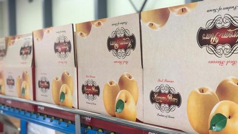 Evergood - Thương hiệu lê Hàn Quốc được ưa chuộng tại Việt Nam