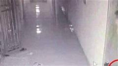 Nổ ở chung cư khiến một người nát tay: Trích xuất camera