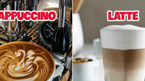 Có 8 loại cafe thông dụng trong các quán hiện nay mà ai cũng khó lòng phân biệt được, những người 'sành' uống đôi khi còn nhầm lẫn
