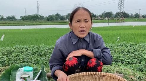 Giữa trời mưa mà bà Tân vẫn 'nổi lửa' nấu xôi ngoài vườn, kết quả là một đĩa xôi xoài siêu to khổng lồ cho 3 mẹ con ăn