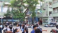 Một ngày sau vụ bật gốc cây ở sân trường: Phụ huynh lo lắng dắt tay con, học sinh ám ảnh không dám nhớ đến vụ việc