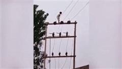 Hú hồn bé trai 5 tuổi trèo lên đỉnh cột điện cao thế