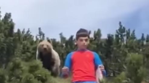 Italy: Cậu bé 12 tuổi bình tĩnh thoát khỏi gấu hoang tấn công