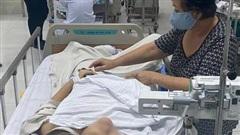 Người cha nghèo của bé trai bị cây phượng ngã đè chấn thương nặng: 'Mình chẳng làm gì được nên thấy bất lực quá'