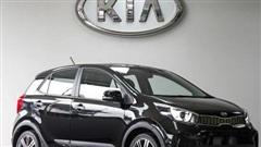 Giá xe ôtô hôm nay 29/5: Kia Morning dao động từ 299-393 triệu đồng