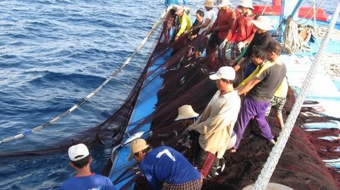 Trọn đời bám biển: Tay trắng làm nên cơ nghiệp