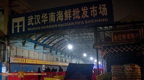 Trung Quốc: Chợ hải sản Vũ Hán không phải là nơi khởi nguồn dịch Covid-19